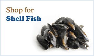 Shop for shell fish